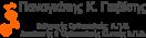 Παναγιώτης Γκιβίσης | Ορθοπαιδικός Χειρουργός, Καθηγητής Α.Π.Θ.